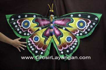measurement of butterfly figure kite